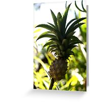 Pinapple Greeting Card
