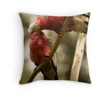 Galahs Kissing Throw Pillow