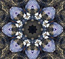 Reflection Kaleidoscope by Jordan Blackstone