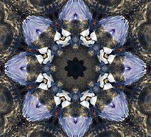 Reflection Kaleidoscope by Jordan Blackstone