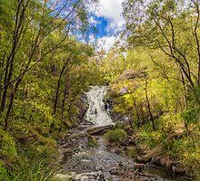 Beedelup Falls, Pemberton, Western Australia #2 by Elaine Teague