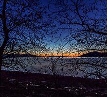 Dawn at Kerkini's Lake Wetlands by George Mast