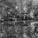Dark reflections by WendyJC