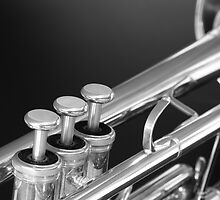 Trumpet close up by Tim Ferrier
