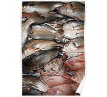 Fish Market in Ibarra Poster