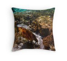 110312 Snorkeling 19 Turtle Throw Pillow