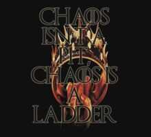Chaos Is a Ladder by eamon short