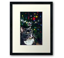 Jinxy Framed Print