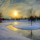 Winter Stream by njordphoto