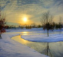 Winter Stream by Bill Wetmore
