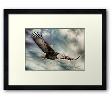 FLIGHT OF AN EAGLE Framed Print