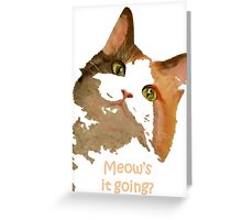 Meow's It Going Greeting Card