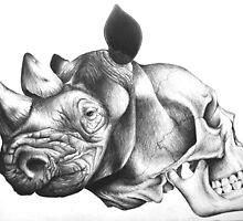 Metamorphosis: Rhino Skull by MicheleWiesen