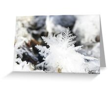 feather ice Greeting Card