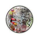 Pinhole Collection No.1 by Zita