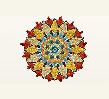 Colorful Mandala Sign Little Dots by Lucie Rovná