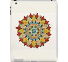 Colorful Mandala Sign Little Dots iPad Case/Skin