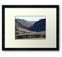 Hall Dale Framed Print