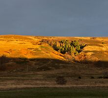 Rothes Glen at sundown by JASPERIMAGE