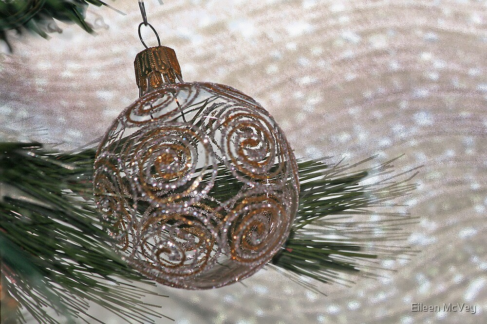 Ornament in Ice by Eileen McVey