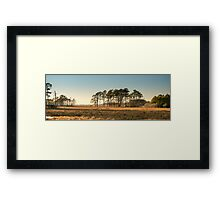 Chincoteague Plains - Chincoteague National Wildlife Refuge, Virginia Framed Print