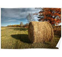 Hay scented harvest Poster