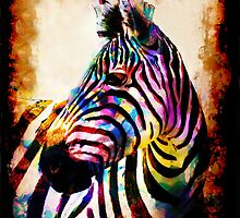 Zebra in Color by Mark Compton by Mark Compton