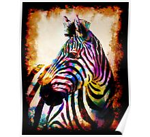 Zebra in Color by Mark Compton Poster
