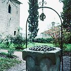 Water well in yard of Petrarch's home Arqua Petrarcha Italy 198404170024  by Fred Mitchell
