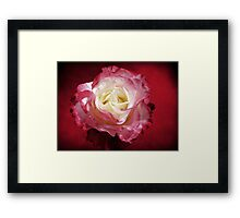 Mellow Passion Framed Print