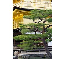 Golden Pavilion in Kyoto Photographic Print
