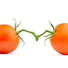 Two tomatoes isolated by Cebas