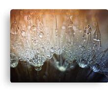 Crystal Clear.... Canvas Print