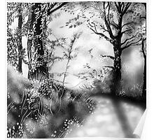 Woodland scene Poster