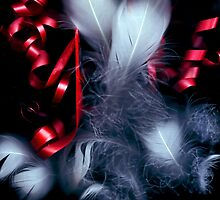 Feathers and Ribbons by bellecards