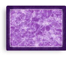 Mixed color Poinsettias 1 Outlined Purple Canvas Print