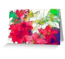 Mixed color Poinsettias 1 Serene Greeting Card