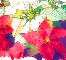 Mixed Color Poinsettias 2 Serene by Christopher Johnson