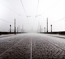 Heavy Rain by Erik Eichler
