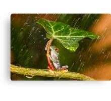 Ohh No... :( Raining Canvas Print
