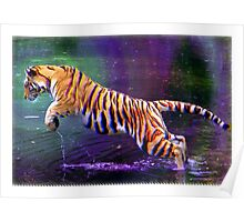 4-D tiger Poster