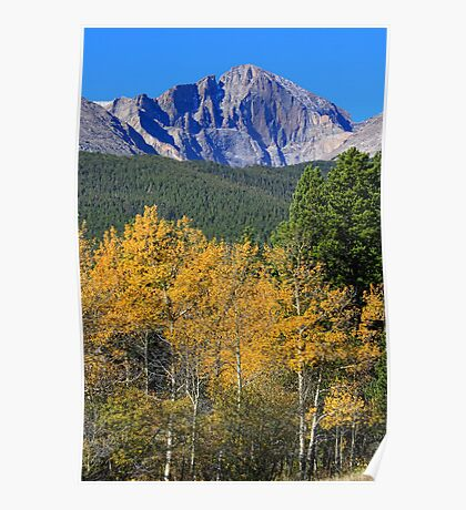 Autumn Aspens and Longs Peak Poster