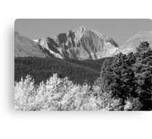 Longs Peak Autumn Aspen Landscape View BW Canvas Print