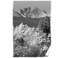Longs Peak Autumn Scenic BW View Poster