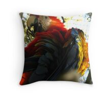 Kodachrome Throw Pillow