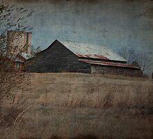 Rural America, NC by Denise Worden