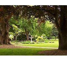 Landscaped Green Park with Fountain Photographic Print
