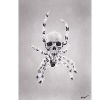 Arachnophobia's Reaper Photographic Print