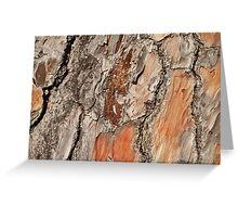 Tree Bark Art Greeting Card