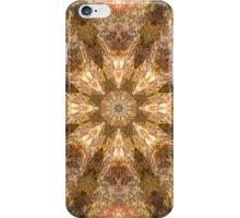 Garden Stone Mandala 8c iPhone Case/Skin